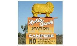 Nelia Gaari Station - Darling River Run